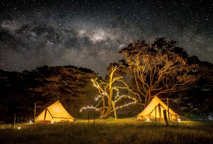 Tents under the stars at Sheltered Glamping on Phillip Island © The Sheltered Glamping Co