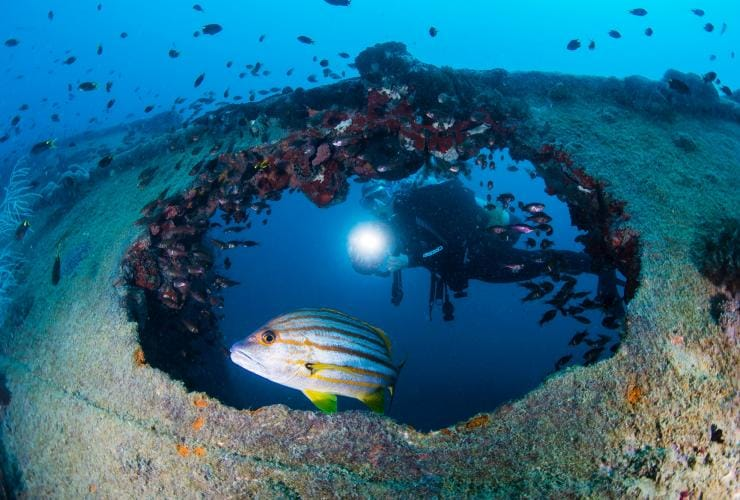 Yongala shipwreck, Townsville, Great Barrier Reef, QLD © Tourism and Events Queensland