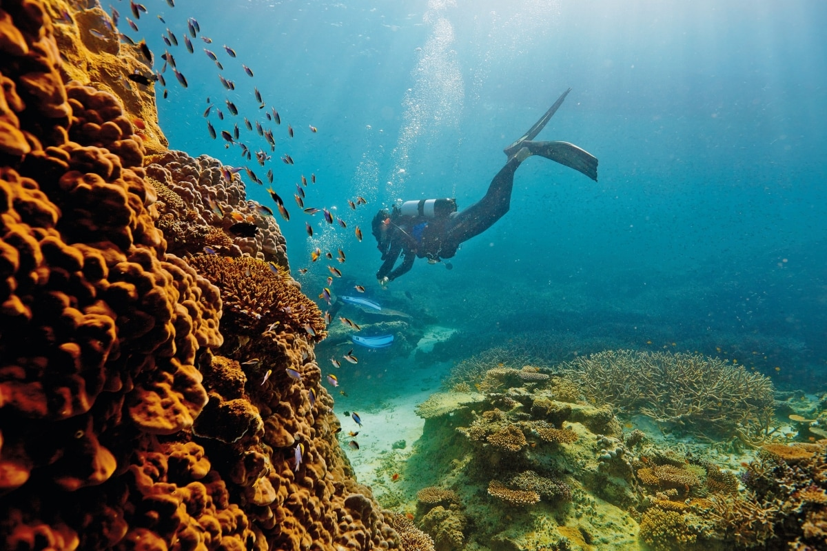 an overview of the australian great barrier reef One of the 7 natural wonders of the world, the great barrier reef is one of the most unique places on earth here's our experts' guide of what to expect.