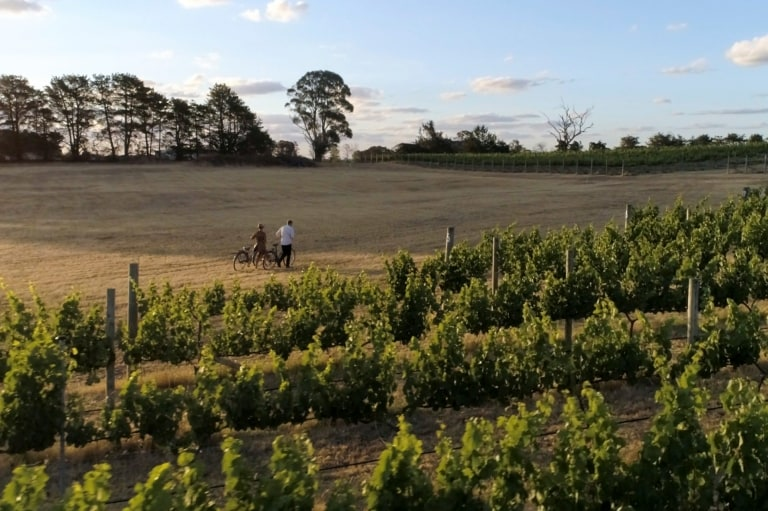 A couple of people take a walk with their bikes alongside Clonakilla vineyard, Murrumbateman, New South Wales © Destination NSW