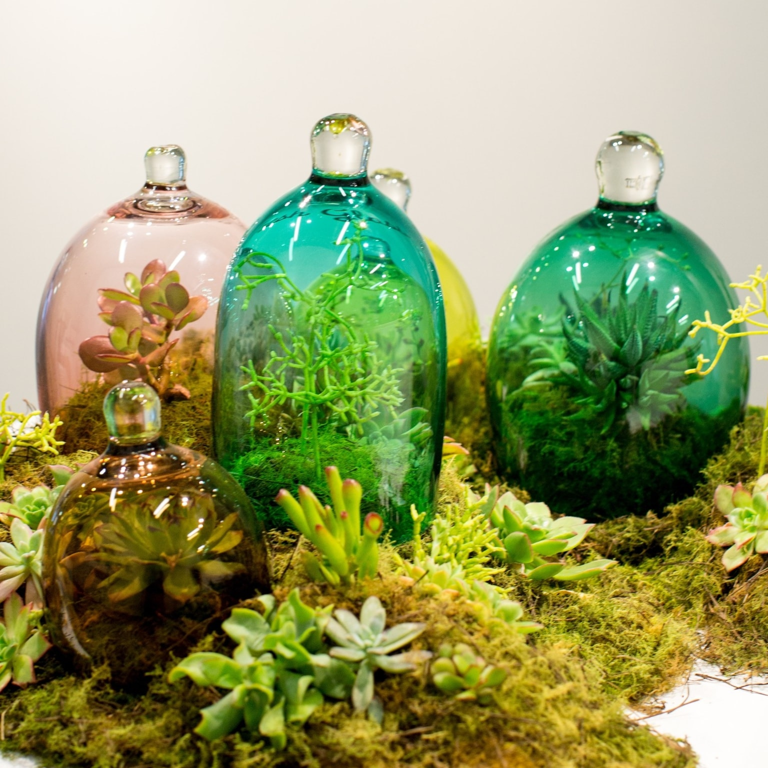 Artistic display at Canberra Glassworks in Kingston © VisitCanberra