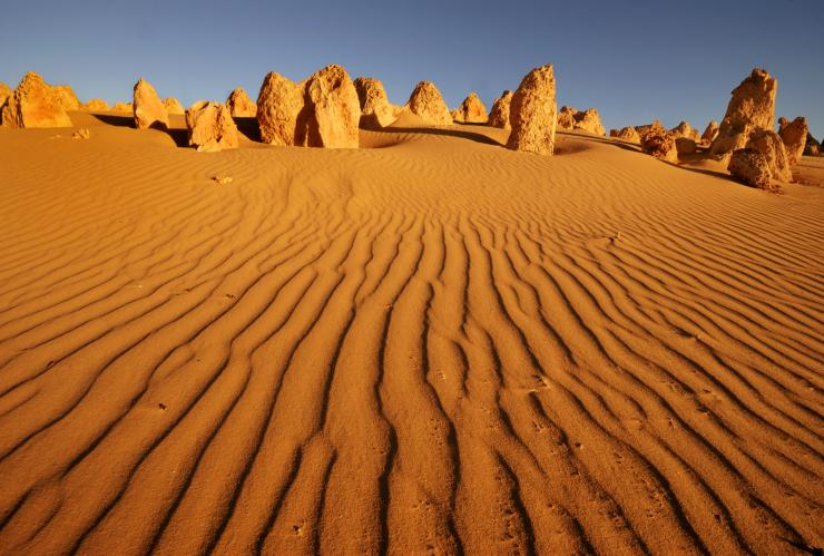 The Pinnacles, Nambung National Park, WA © BIG4 Holiday Parks