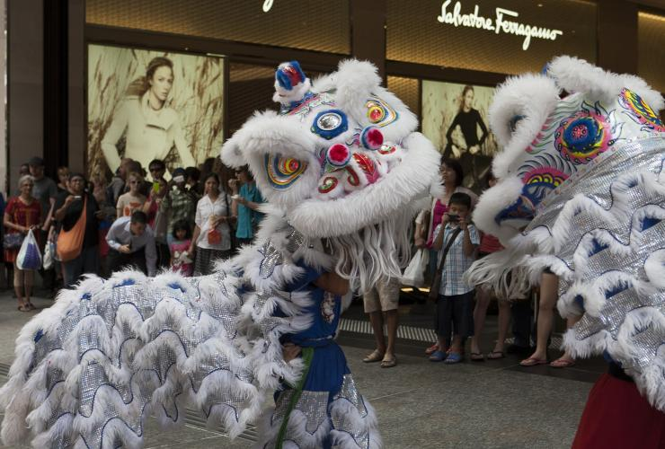 Lion dancers, Chinese New Year, Brisbane, QLD © Michael Greves