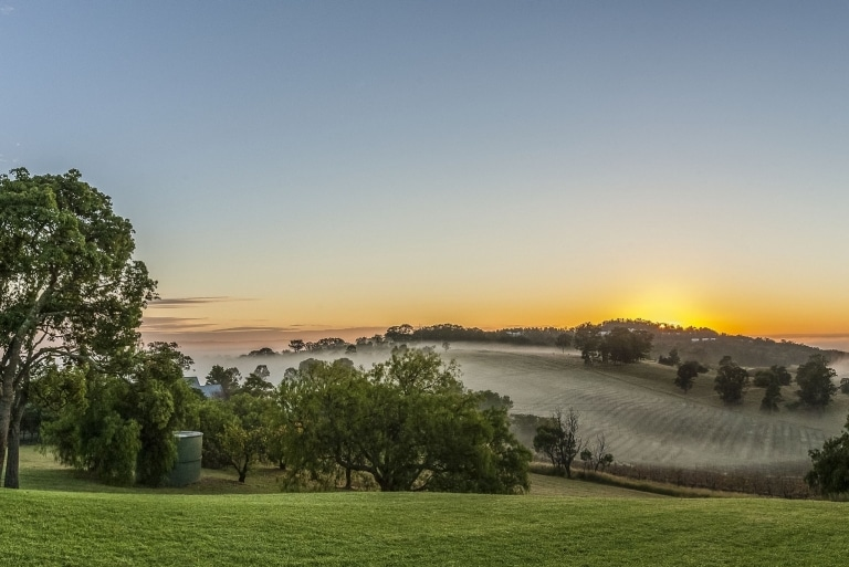 Audrey Wilkinson Wines, Hunter Valley, NSW © Destination NSW
