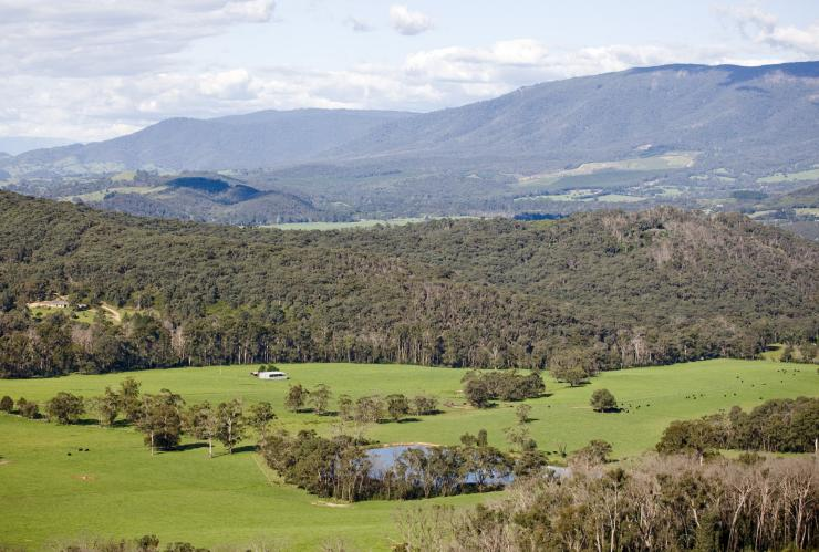View of grassy plains and the Cathedral Ranges © Visit Victoria