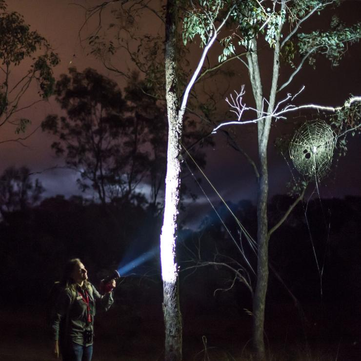 Ranger leads a Twilight Tour at Mulligans Flat Woodlands Sanctuary near Canberra © Visit Canberra