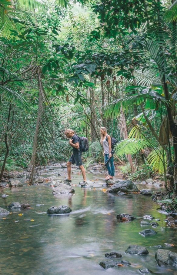 Young couple hiking through Daintree rainforest © Tourism Tropical North Queensland