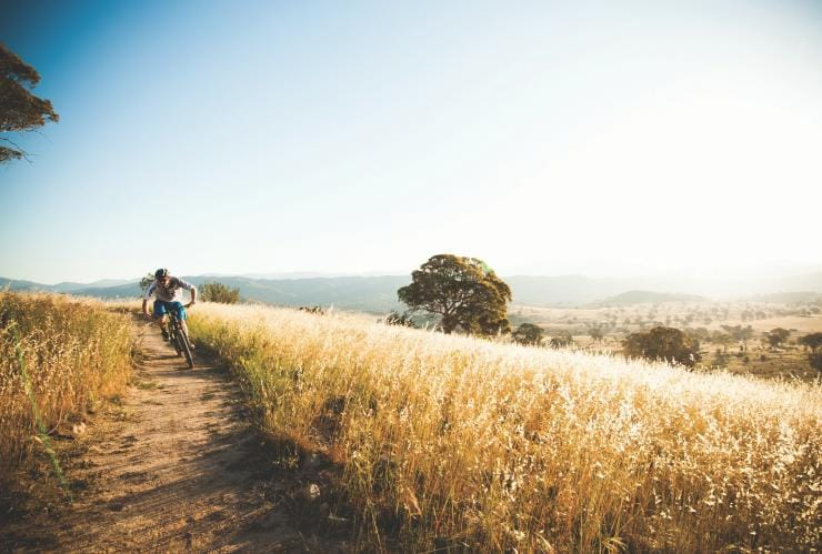 Person cycling on the Centenary Trail © VisitCanberra