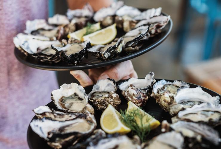 Plate of oysters at Get Shucked restaurant © Adam Gibson