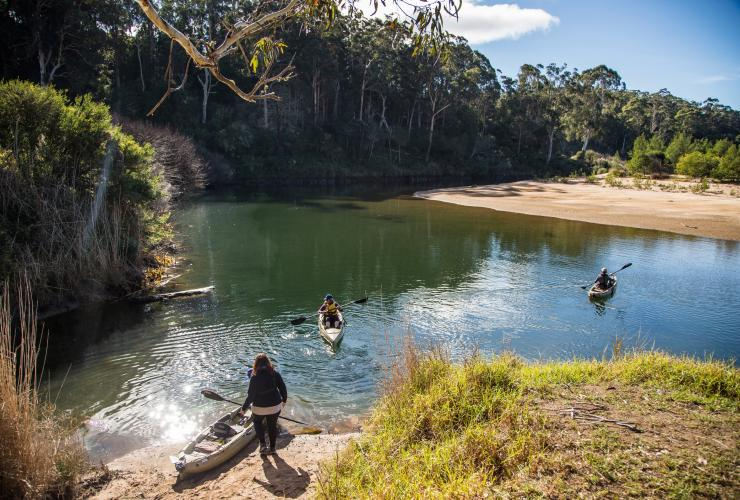 Towamba River, Kiah, NSW © Destination NSW