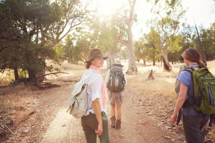 The Arkaba Walk, Ruger's Hill, Flinders Ranges, SA © South Australian Tourism Commission