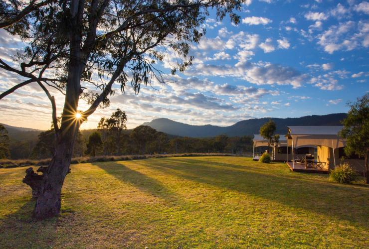 Spicers Canopy Eco Lodge, Maryvale, Scenic Rim, QLD © Spicers Retreats, Great Walks of Australia