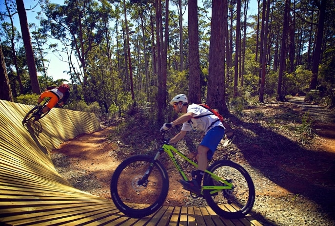 Parc de VTT Hollybank, Underwood, TAS. © Tourism Tasmania et avec l'aimable autorisation de Flow Mountain Bike