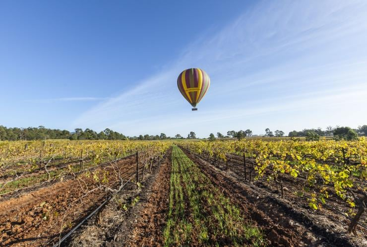 Balloon Aloft, Hunter Valley, NSW © Murray Vanderveer, Destination NSW