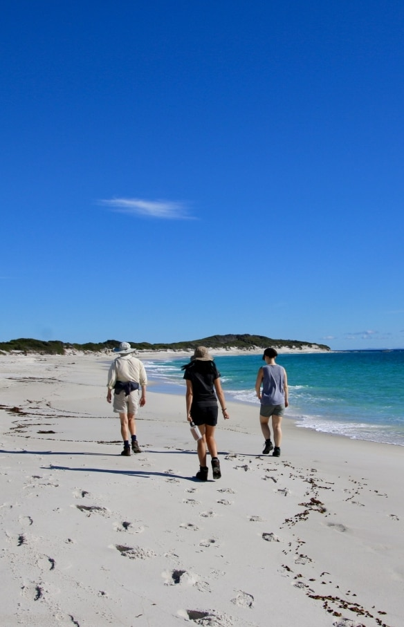 Wukalina Walk, Bay of Fires, TAS © Tourism Australia
