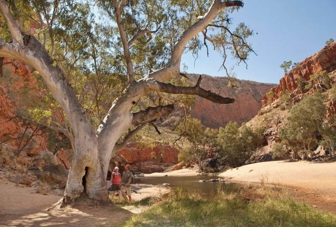 Ormiston Gorge, West MacDonnell Ranges, Centre Rouge, Territoire du nord. © Tourism NT