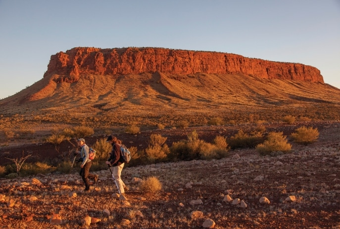 Mount Conner, Curtin Springs Station, Centre Rouge, Territoire du Nord. © Tourism Northern Territory