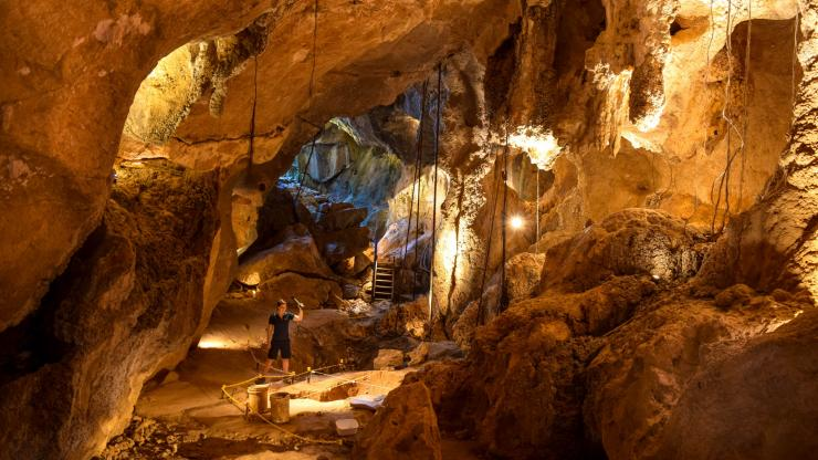 Capricorn Caves, Rockhampton, QLD © Capricorn Caves