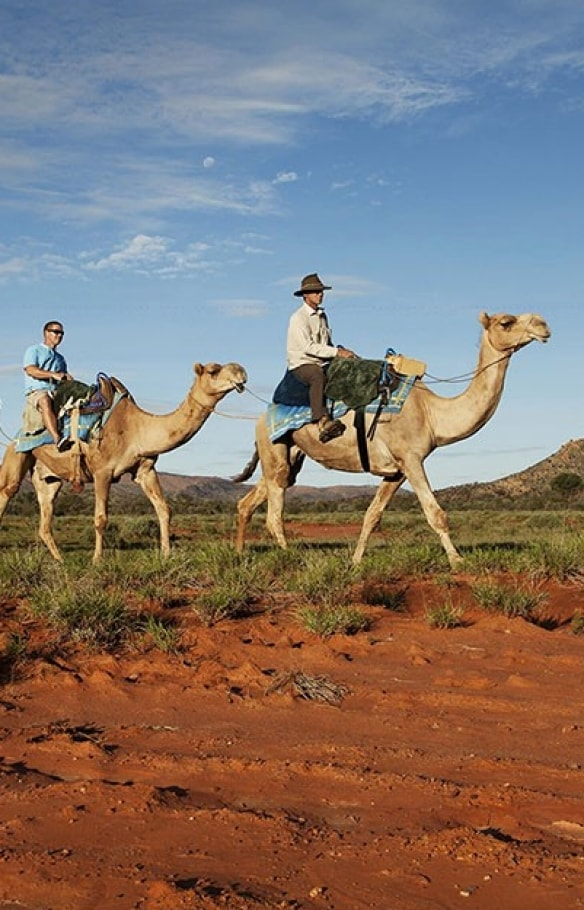 Camel Train Tour, Red Centre, NT © Tourism NT