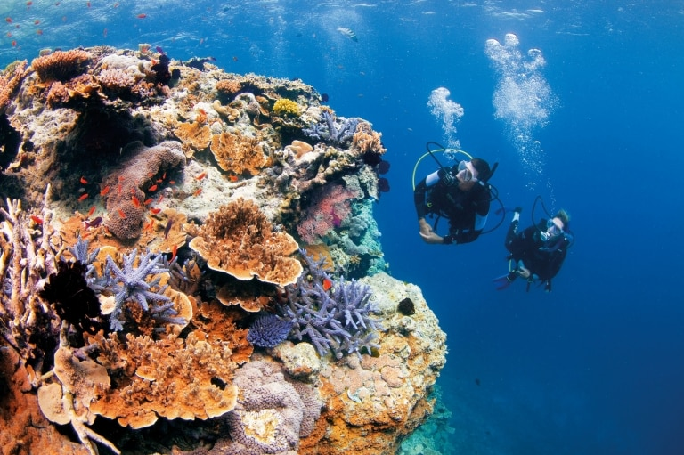 Pixies Garden, Great Barrier Reef, QLD. © Tourism and Events Queensland