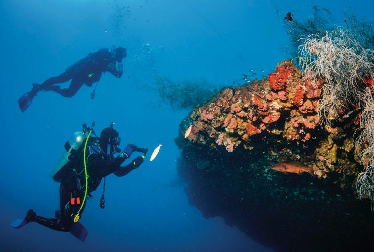 SS Yongala, Great Barrier Reef, QLD © Tourism and Events Queensland