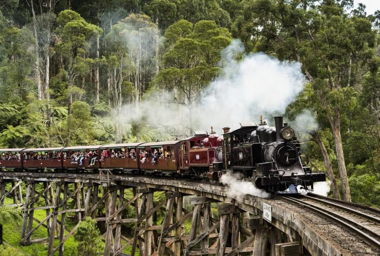 Puffing Billy Railway, Dandenong Ranges, VIC © Visit Victoria
