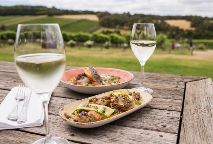 Montalto Vineyard and Olive Grove, Mornington Peninsula, VIC © Tourism Australia