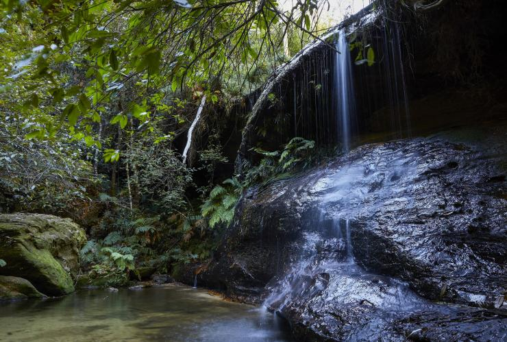 South Lawson Waterfall Circuit, Lawson, Blue Mountains, NSW © Destination NSW