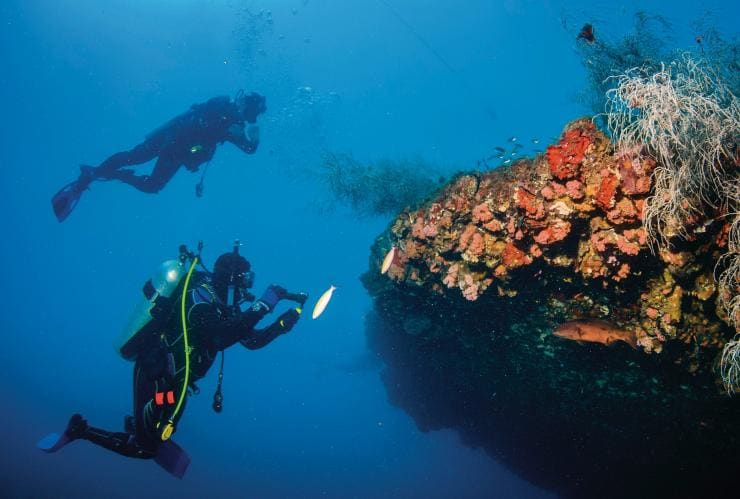 Yongala Shipwreck, Great Barrier Reef, QLD © Tourism Queensland