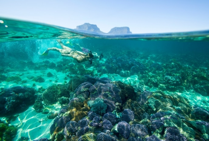 Snorkelling at Lord Howe Island, NSW © Trevor King, Destination NSW