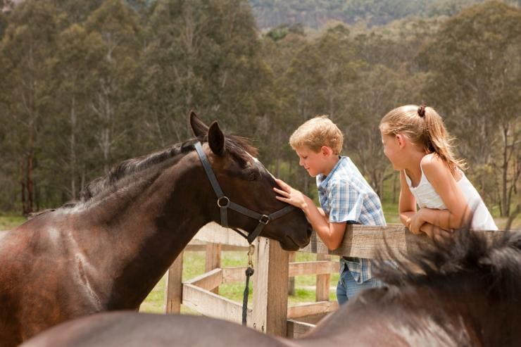Kid Snorkelling Great Barrier Reef, Cairns, QLD © AdventureMumma, Tourism and Events Queensland