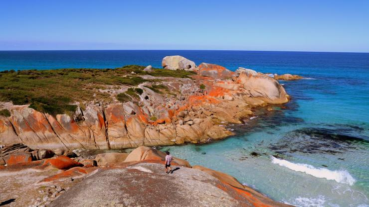 Bay of Fires, East Coast, TAS © Tourism Tasmania