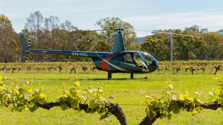 Grampians Helicopter Tours di Best's Wines, Grampians Region, VIC © Justine Hide