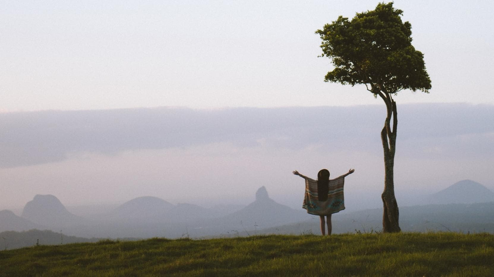 One Tree Hill, Maleny, Sunshine Coast, QLD © Tourism and Events Queensland