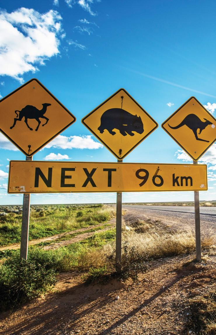 Eyre Highway, Nullarbor, South Australia © Greg Snell