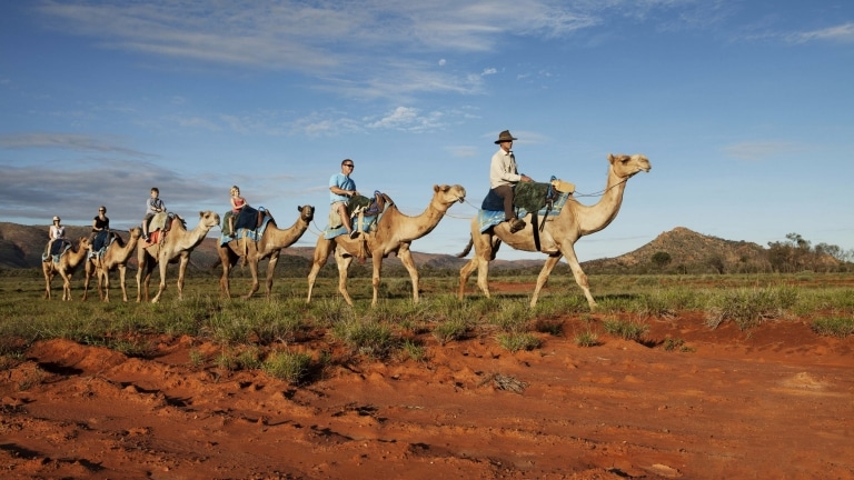 Camel Train Tour, Red Centre, Northern Territory © Tourism NT