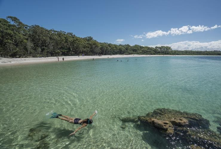 Snorkelling, Jervis Bay, Shoalhaven, New South Wales © Destination NSW