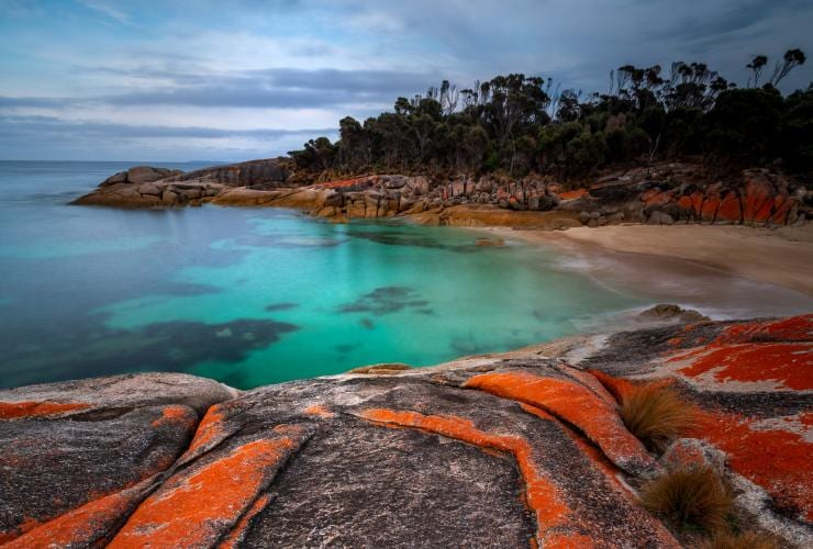 Trousers Point, Flinders Island, Tasmania © Luke Tscharke