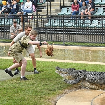 Wildlife Warriors Show, Brisbane, Queensland © Australia Zoo