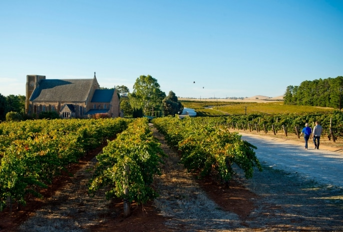 Sevenhill Cellars, Clare Valley, South Australia © South Australian Tourism Commission, Adam Bruzzone