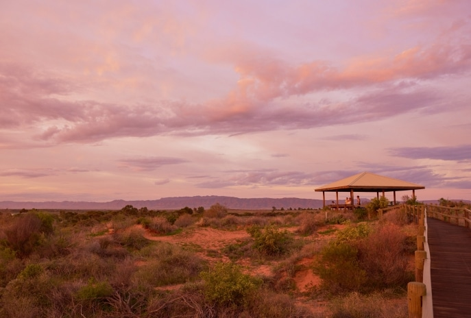 Australian Arid Lands Botanic Garden, Port Augusta, South Australia © South Australian Tourism Commission