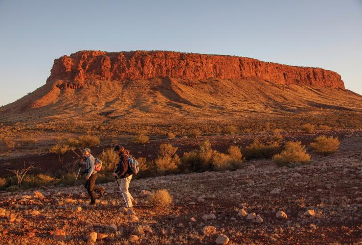 Mount Conner, Curtin Springs Station, Red Centre, Northern Territory © Tourism NT