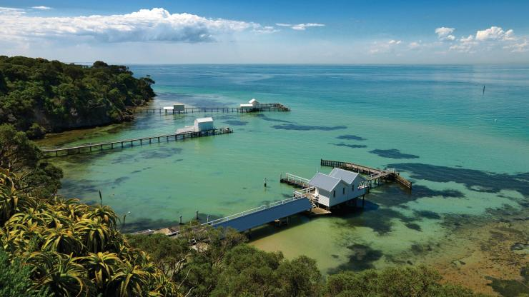 Point King Beach, Mornington Peninsula, Victoria. © Derek Ross, Tourism Australia