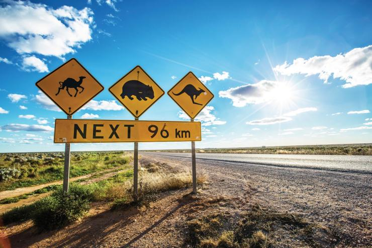 Eyre Highway, Nullarbor, South Australia © Greg Snell, Tourism Australia