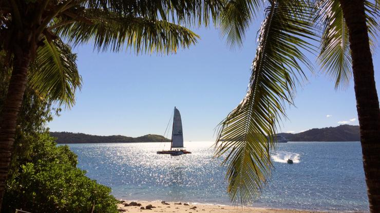 Hamilton Island, Whitsunday Islands, Grande Barriera Corallina, Queensland © Tourism and Events Queensland