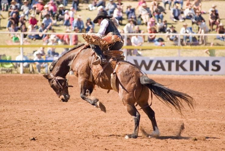 Mt Isa Rodeo, Mt Isa, Outback Queensland © Tourism and Events Queensland