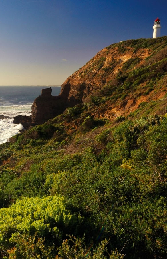 ビクトリア州、モーニントン半島(Mornington Peninsula)、ケープ・シャンク・ボードウォーク(Cape Schanck Boardwalk) © Mornington Peninsula Regional Tourism