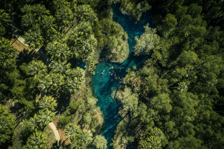 北領地埃爾西國家公園(Elsey National Park)苦泉(Bitter Springs)©北領地旅遊局的Jason Charles Hill