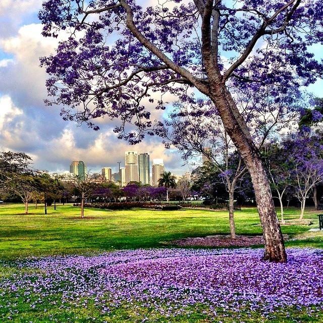 migliori siti di incontri a Brisbane