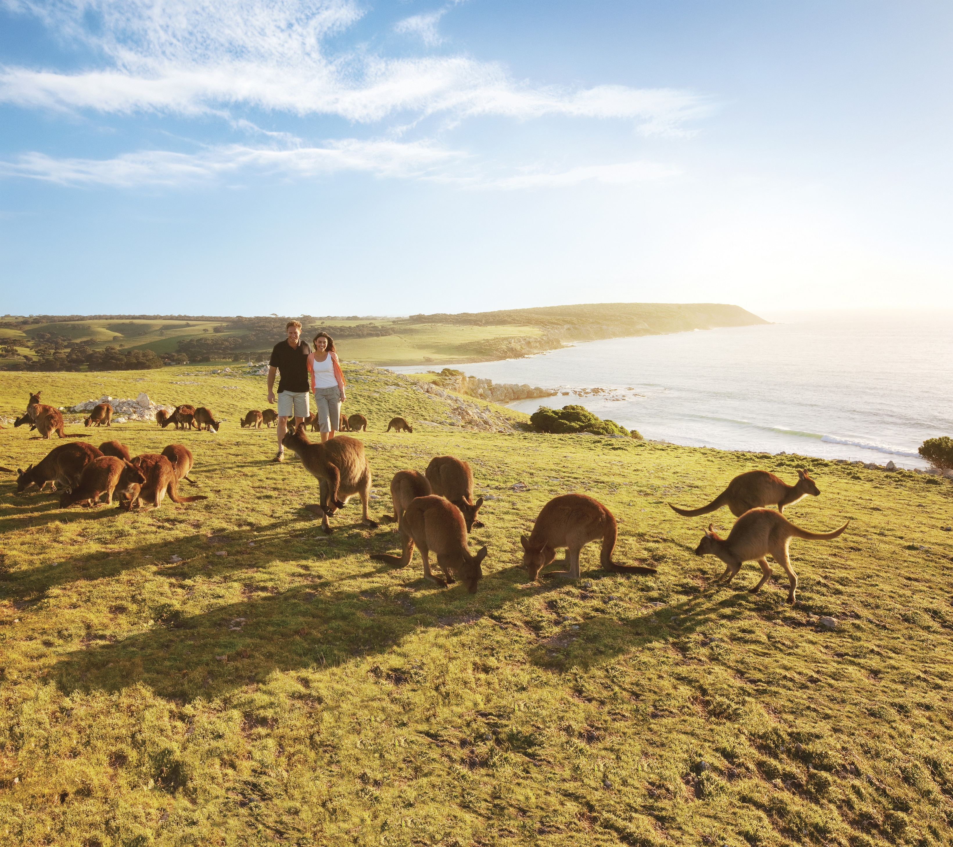 Kangaroo Island Experiences and Attractions